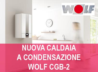 caldaia wolf cgb-2